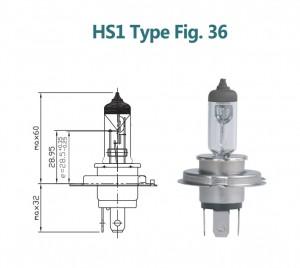 HS1 12V 35/35W